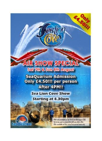 Air Show Flyer