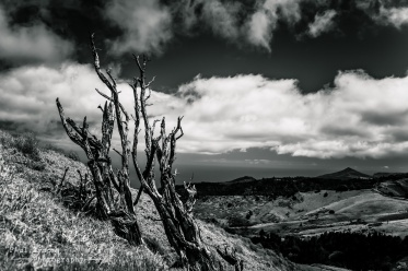 High Peak B&W 2